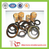 NBR Tc Oil Seals for Auto and Industrial Products