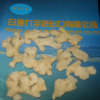 Dried Ginger in Competitive Price