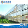 Best Price for Glass Greenhouse Film Greenhouse