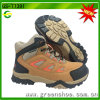 New Arrival 2017 Kids Hiking Shoe for Child