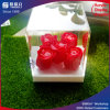 Fluid Design Acrylic Display Flower Box