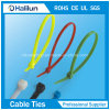 Nylon66 Cable Tie for Bundling Wires