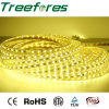 120LEDs/M 14.4W Waterproof LED Strip Light IP65 12V
