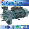 Dtm Series Centrifugal Pump for Well-Pump, Water Supplying, Decanting, Mixing and Irrigating
