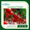 Supply Best Natural Plant Extract Tomato Extract Lycopene Powder