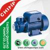 Chimp Qb80 Small Garden Irrigation Water Pump
