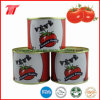 Veve Brand Canned Tomato Paste with Low Price