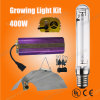 High Power 400W Growlight Hydroponic Lighting for Greenhouse
