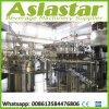 Carbonated Drink Riner Filler Capper Machine Soft Water Packing Line