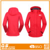Women′s Warm Colorful Lightweight Jacket
