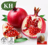 Pomegranate Peel Extract Ellagic Acid; Polyphenols