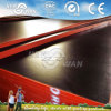 Top Film Faced Plywood Panel for Formwork Shutter