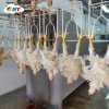 Stainless Steel 304 Poultry Slaughter House Equipment for Chicken Farm Abattoir Machine