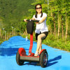 New Fashion 17inch Two Wheel Electric Balance City Scooter