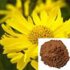 Arnica Extract / Arnica Montana Powder /Arnica Flower Extract Powder