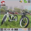Snow Fat Tiye Beach Man Cruiser Electric Bike with Peda Bicycle L for Sale
