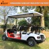 Custom Golf Cart (EZGO car body) , Customized Electric Golf Cart, 4 Seater Electric Car Used in Amusement Park