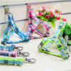 Pet Product Supply Dog Cat Puppy Colorful Harness (H007)