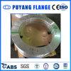 Aluminum 5052 Plate Flange (PY00109)