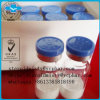 High Quality and Moderate Peptide Octreotide Acetate