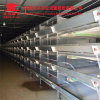 Full Automatic Poultry Equipment Big Capacity Battery Chicken Farm Cage