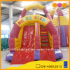 Commercial Used Inflatable Toy Super Red Water Slide (AQ913-2)