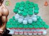 Thyroxine & Epinephrine Powder 51-41-2 Norepinephrine (NE)