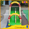 Used Commercial Single Lane Inflatable Slide, Inflatable Dinosaur Standard Slide for Sale (AQ913-7)