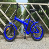 Women′s Fat Tires Electric Bikes with Step Through Frame Rseb507