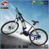 Electric Mountain Bicicleta MID Motor MTB Bike for Sale