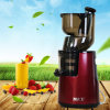 Household Slow Speed Multi-Function Power Juicer with AC Motor (RJ-202)