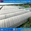 China Factory Supply Plastic Transparent Garden Greenhouse Film