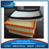 High Quality Air Filter for 5519606