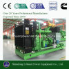 Ce Approved 20kw Biogas Gas Generator Set Price