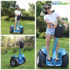 Xinli Wholesale High Quality Self Balancing 2000W Electric Scooter for Adult