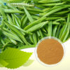 GMP Factory Supply Black Tea Extract Theaflavins 10%, 40%, 50%, 60%