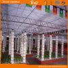 Polycarbonate Sheet Multi-Span Venlo Type Greenhouse