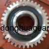Straight Bevel Gear for Anchor Machine (ZZ1027) Stainless Steel