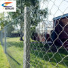 Specialized Manufacturer Galvanized Chain Link Fence