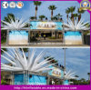 Party/Event/Exhibition Ceiling Decoration Inflatable Flower/LED Lighting Decoration
