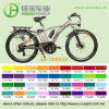 Globally Popular 36V/10ah Lithium Battery Mountain Bike (JB-TDE02Z)