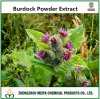 Tcm Chinese Burdock Powder Extract with Antibacterial and Antiviral Arctiin 98% Assay