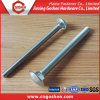 Carriage Bolt, Zinc Plated Carriage Bolt