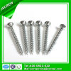 40mm Double Contersunkhead Self Screw for Building
