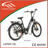 36V Hide Inside Battery E-Bike with CE
