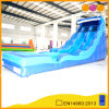 Inflatable Water Slide with Double-Channel Amusement Park (AQ1066)