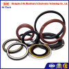 Tc NBR Hydraulic Machine Oil Seal for Cars and Truck