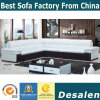 Factory Wholesale Hotel Lobby Furniture Leather Sofa (A34)