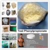 High Quality Test Phenylpropionate Steroids Testosterone Phenylpropionate for Muscle Gain
