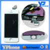 Wholesale Price Glass LCD for iPhone 5